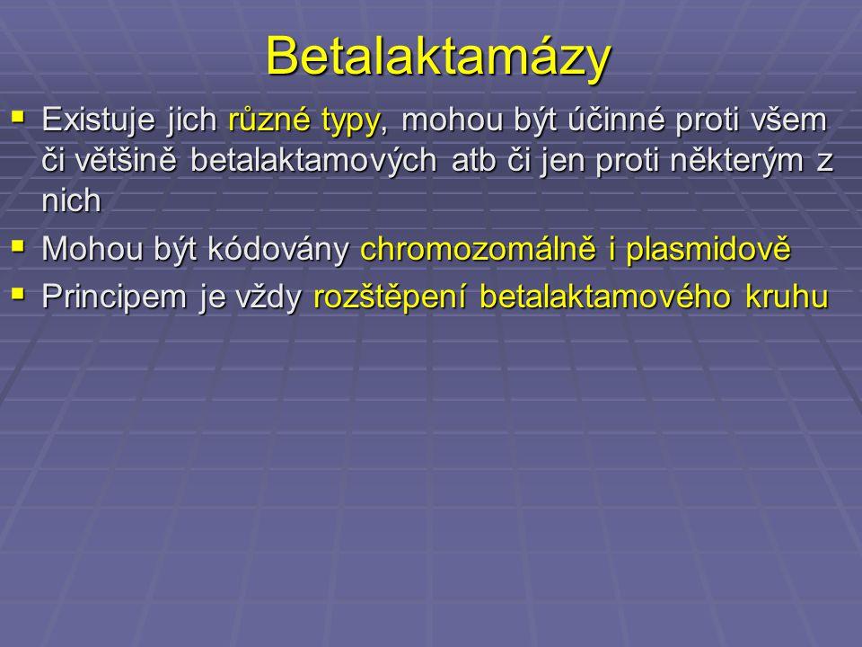 Betalaktamázy  Existuje jich různé typy, mohou být účinné proti všem či většině betalaktamových atb či jen proti některým z nich  Mohou být kódovány