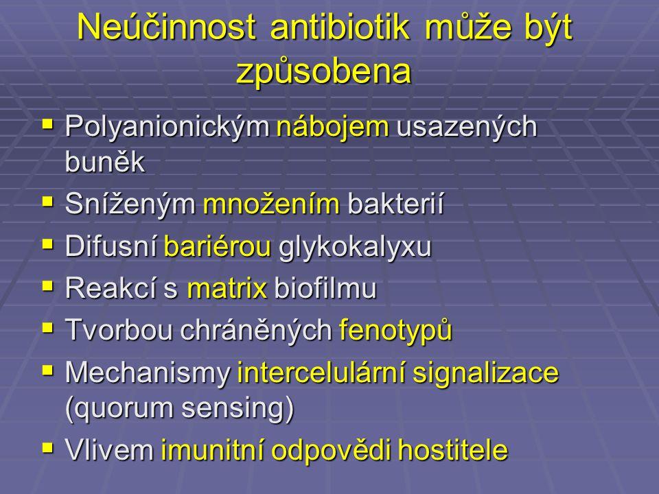 Neúčinnost antibiotik může být způsobena  Polyanionickým nábojem usazených buněk  Sníženým množením bakterií  Difusní bariérou glykokalyxu  Reakcí