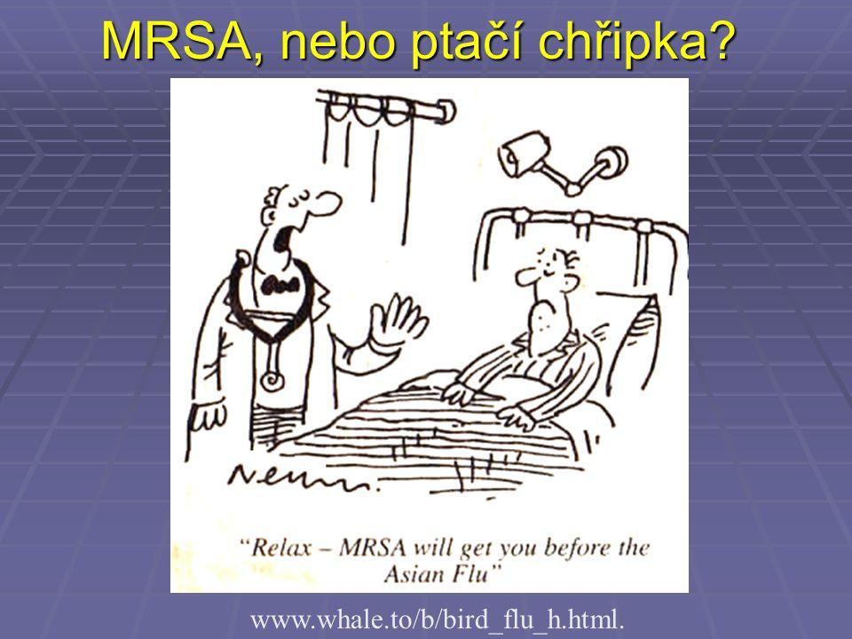 MRSA, nebo ptačí chřipka? www.whale.to/b/bird_flu_h.html.