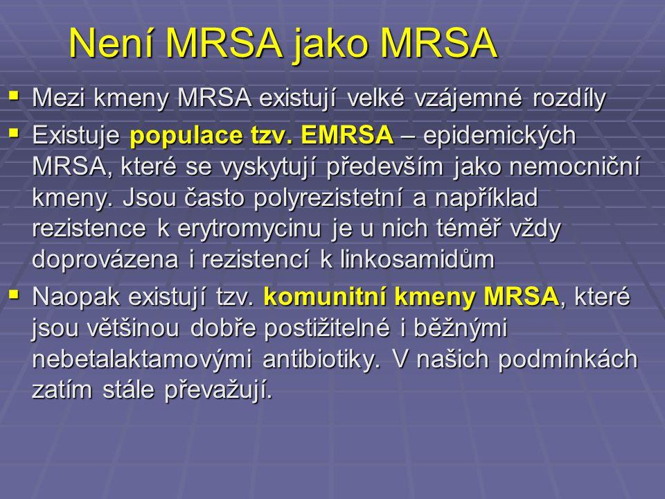 Není MRSA jako MRSA  Mezi kmeny MRSA existují velké vzájemné rozdíly  Existuje populace tzv. EMRSA – epidemických MRSA, které se vyskytují především