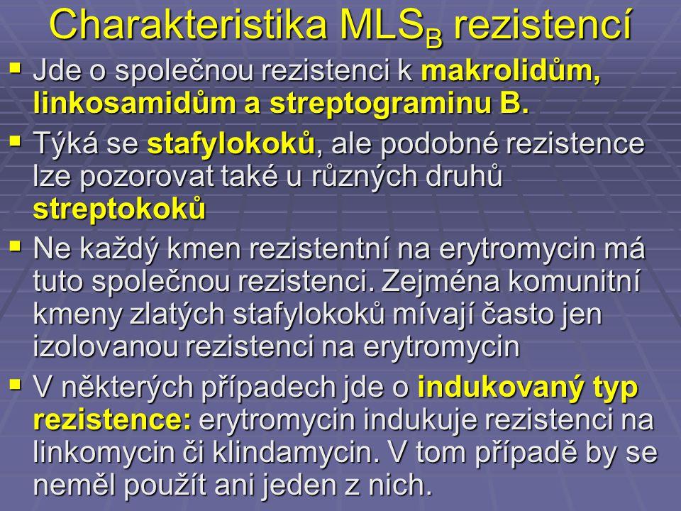 Charakteristika MLS B rezistencí  Jde o společnou rezistenci k makrolidům, linkosamidům a streptograminu B.  Týká se stafylokoků, ale podobné rezist