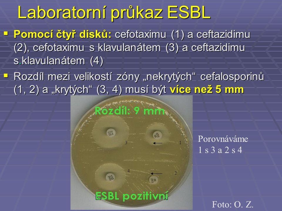 Laboratorní průkaz ESBL  Pomocí čtyř disků: cefotaximu (1) a ceftazidimu (2), cefotaximu s klavulanátem (3) a ceftazidimu s.klavulanátem (4)  Rozdíl