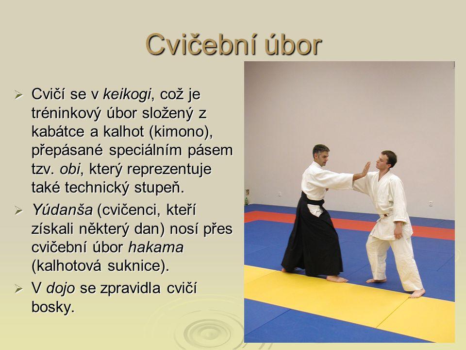 Cvičební úbor  Cvičí se v keikogi, což je tréninkový úbor složený z kabátce a kalhot (kimono), přepásané speciálním pásem tzv. obi, který reprezentuj