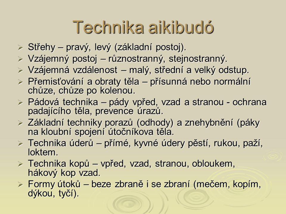 Technika aikibudó  Střehy – pravý, levý (základní postoj).  Vzájemný postoj – různostranný, stejnostranný.  Vzájemná vzdálenost – malý, střední a v