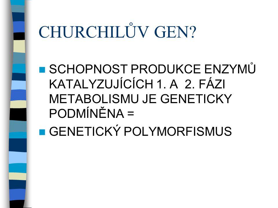 CHURCHILŮV GEN? SCHOPNOST PRODUKCE ENZYMŮ KATALYZUJÍCÍCH 1. A 2. FÁZI METABOLISMU JE GENETICKY PODMÍNĚNA = GENETICKÝ POLYMORFISMUS