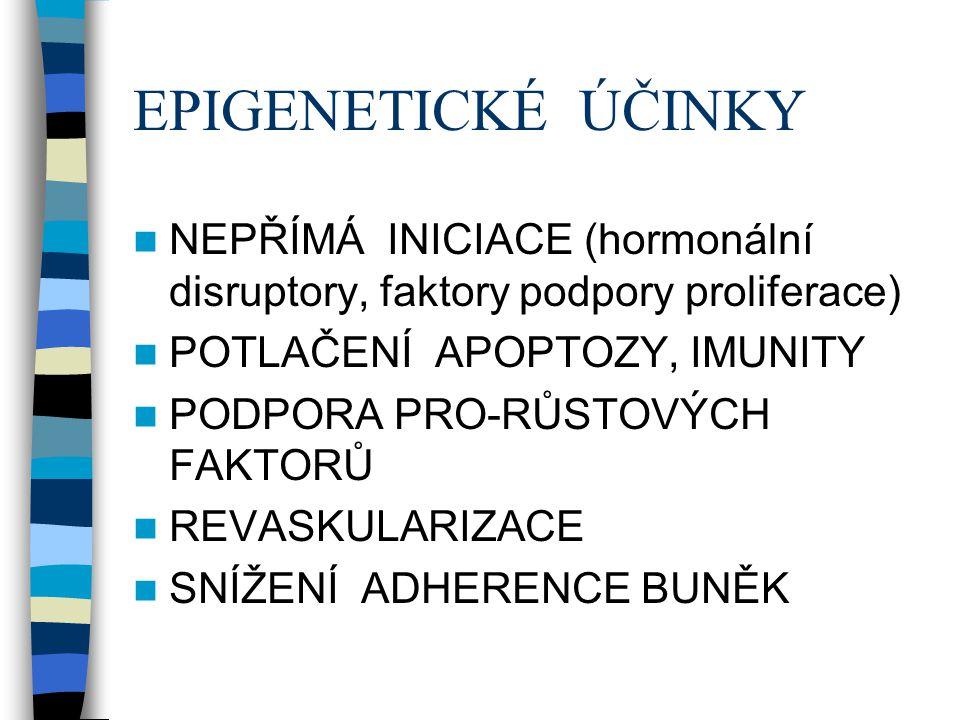 EPIGENETICKÉ ÚČINKY NEPŘÍMÁ INICIACE (hormonální disruptory, faktory podpory proliferace) POTLAČENÍ APOPTOZY, IMUNITY PODPORA PRO-RŮSTOVÝCH FAKTORŮ RE