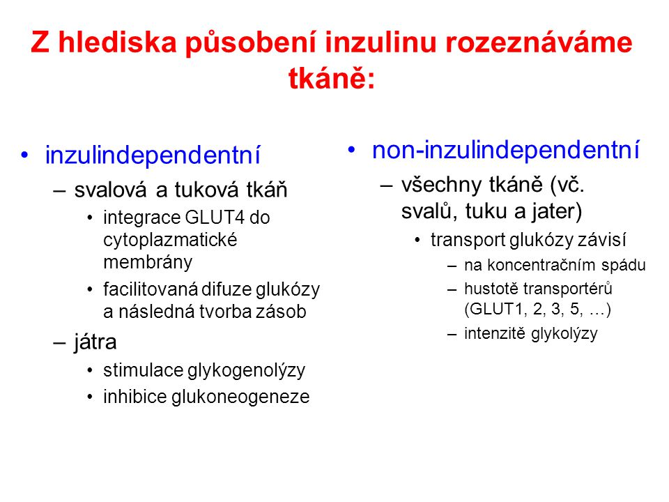 Z hlediska působení inzulinu rozeznáváme tkáně: inzulindependentní –svalová a tuková tkáň integrace GLUT4 do cytoplazmatické membrány facilitovaná dif