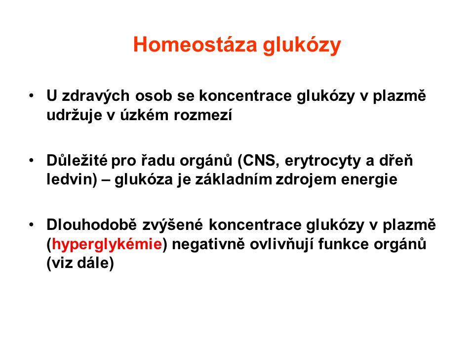 Homeostáza glukózy U zdravých osob se koncentrace glukózy v plazmě udržuje v úzkém rozmezí Důležité pro řadu orgánů (CNS, erytrocyty a dřeň ledvin) –