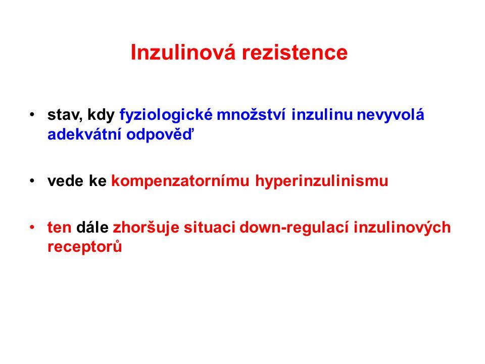 stav, kdy fyziologické množství inzulinu nevyvolá adekvátní odpověď vede ke kompenzatornímu hyperinzulinismu ten dále zhoršuje situaci down-regulací i