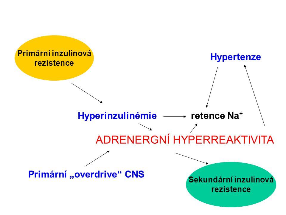 """Primární inzulinová rezistence Sekundární inzulinová rezistence Hyperinzulinémie retence Na + Hypertenze ADRENERGNÍ HYPERREAKTIVITA Primární """"overdriv"""
