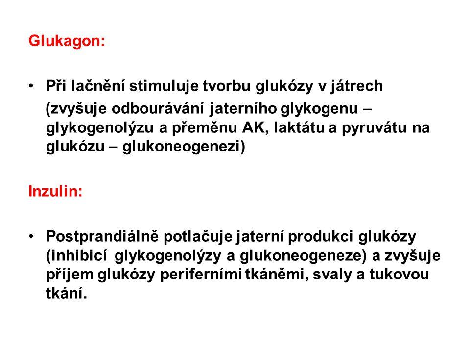 Regulace glykémie Hormonální a)Hlavní : - inzulin - glukagon b)Vedlejší: - adrenalin - glukokortikoidy - růstový hormon Neuronální Vegetativní nervový systém (sympatikus a parasympatikus)