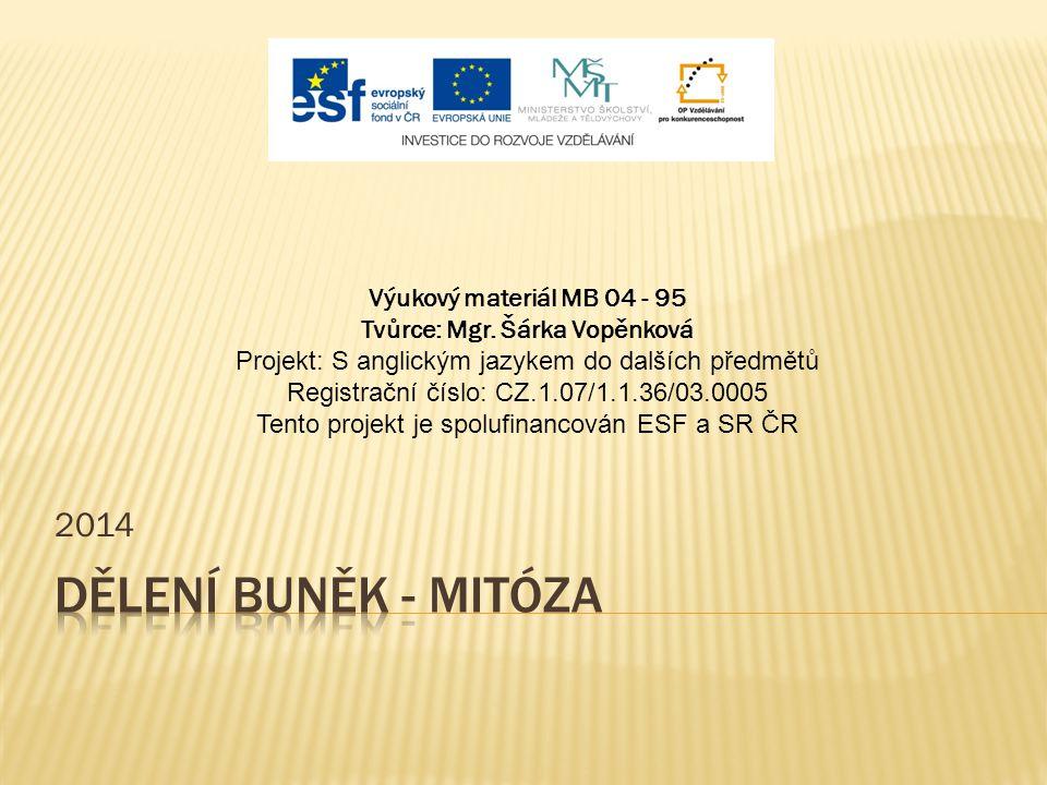 2014 Výukový materiál MB 04 - 95 Tvůrce: Mgr. Šárka Vopěnková Projekt: S anglickým jazykem do dalších předmětů Registrační číslo: CZ.1.07/1.1.36/03.00