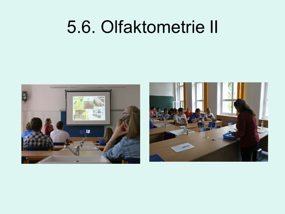 5.6. Olfaktometrie II