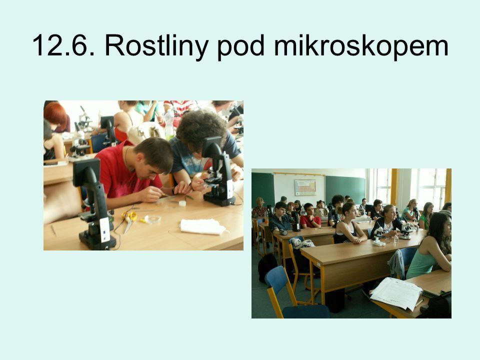 12.6. Rostliny pod mikroskopem