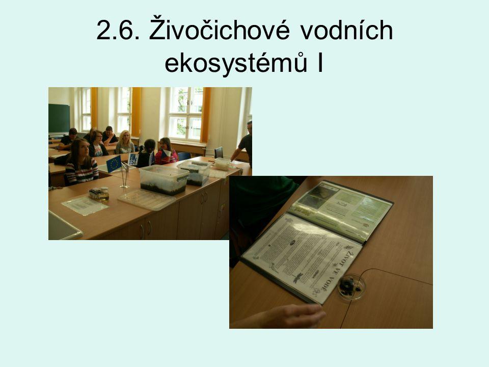 2.6. Živočichové vodních ekosystémů I