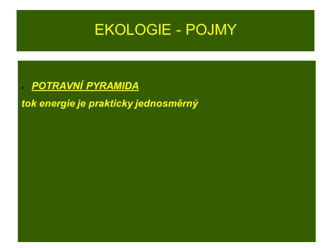 EKOLOGIE - POJMY ● POTRAVNÍ PYRAMIDA tok energie je prakticky jednosměrný
