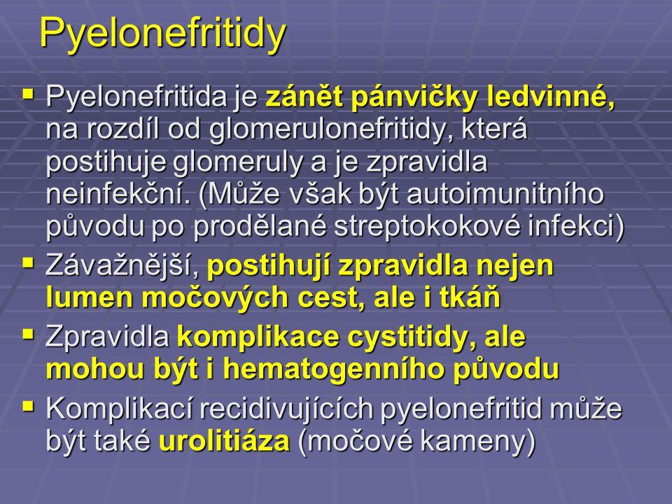 Pyelonefritidy  Pyelonefritida je zánět pánvičky ledvinné, na rozdíl od glomerulonefritidy, která postihuje glomeruly a je zpravidla neinfekční. (Můž