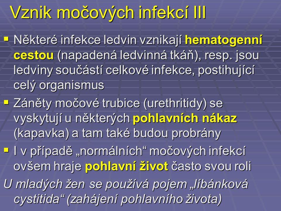 Vznik močových infekcí III  Některé infekce ledvin vznikají hematogenní cestou (napadená ledvinná tkáň), resp. jsou ledviny součástí celkové infekce,