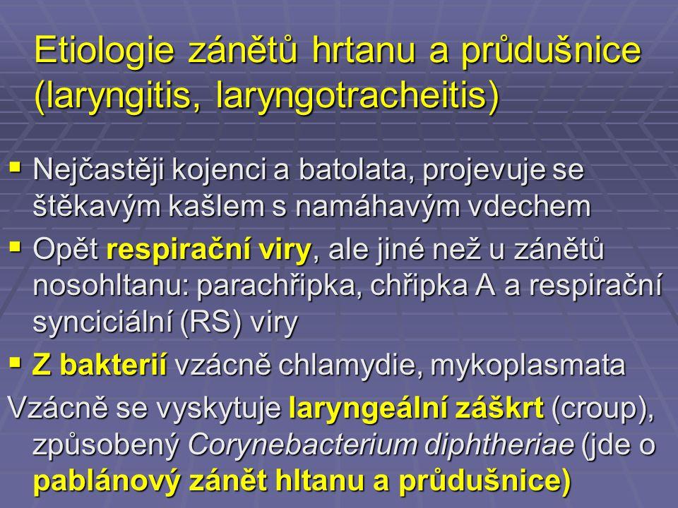 Etiologie zánětů hrtanu a průdušnice (laryngitis, laryngotracheitis)  Nejčastěji kojenci a batolata, projevuje se štěkavým kašlem s namáhavým vdechem