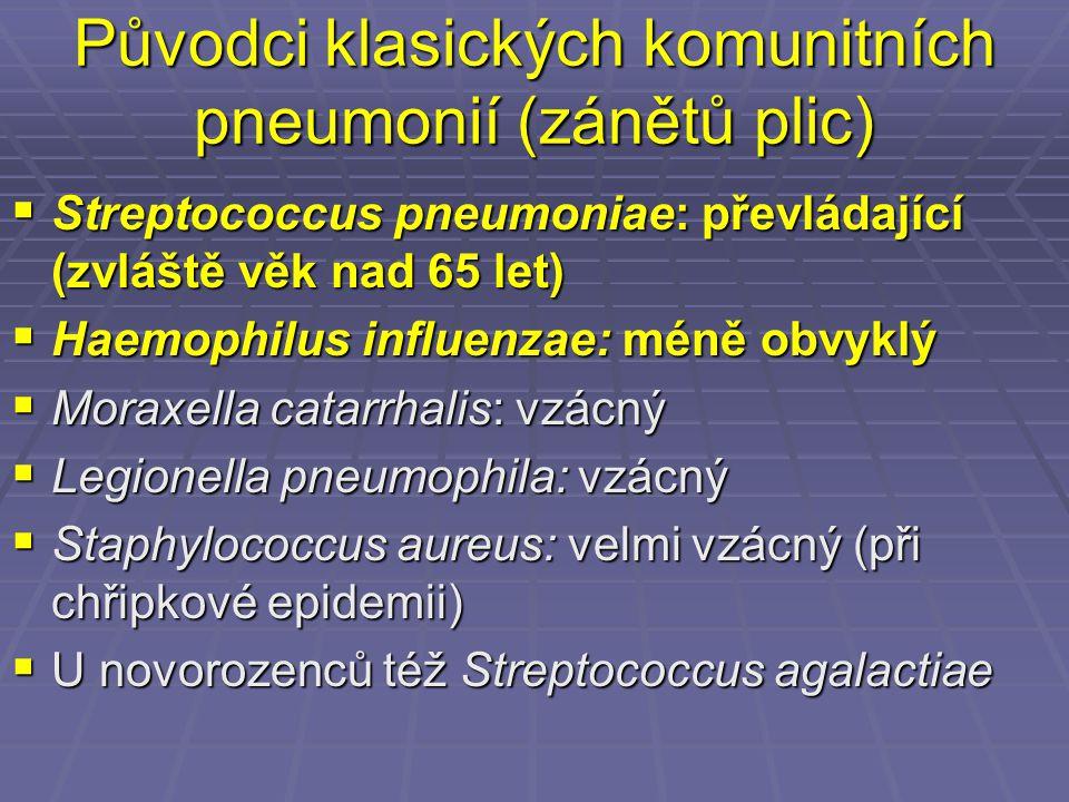 Původci klasických komunitních pneumonií (zánětů plic)  Streptococcus pneumoniae: převládající (zvláště věk nad 65 let)  Haemophilus influenzae: mén