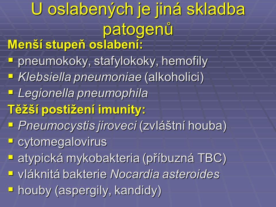 U oslabených je jiná skladba patogenů Menší stupeň oslabení:  pneumokoky, stafylokoky, hemofily  Klebsiella pneumoniae (alkoholici)  Legionella pne