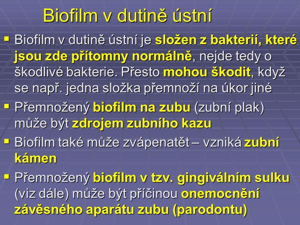 Biofilm v dutině ústní  Biofilm v dutině ústní je složen z bakterií, které jsou zde přítomny normálně, nejde tedy o škodlivé bakterie. Přesto mohou š