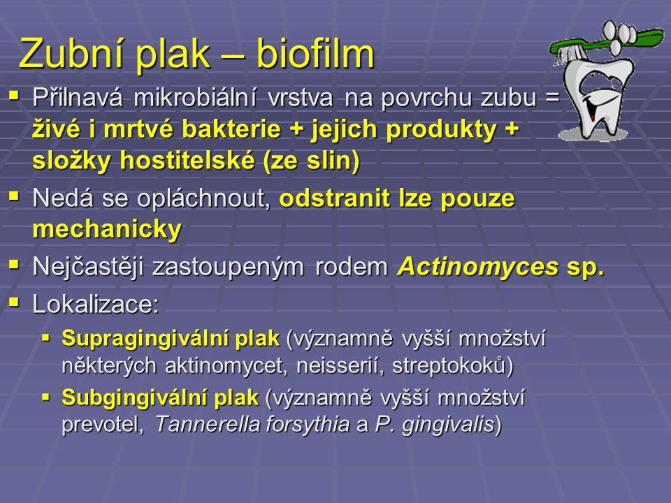 Zubní plak – biofilm  Přilnavá mikrobiální vrstva na povrchu zubu = živé i mrtvé bakterie + jejich produkty + složky hostitelské (ze slin)  Nedá se