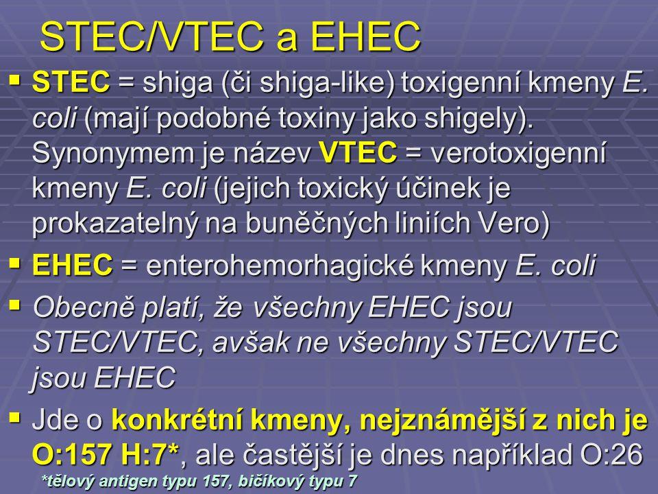 STEC/VTEC a EHEC  STEC = shiga (či shiga-like) toxigenní kmeny E. coli (mají podobné toxiny jako shigely). Synonymem je název VTEC = verotoxigenní km