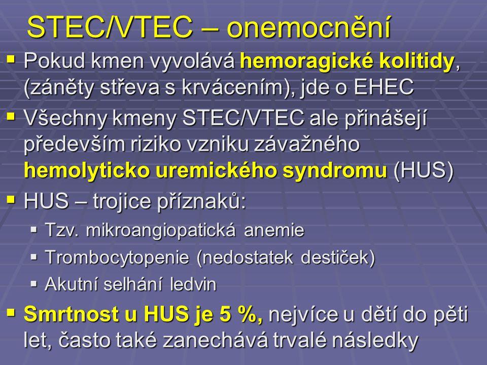 STEC/VTEC – onemocnění  Pokud kmen vyvolává hemoragické kolitidy, (záněty střeva s krvácením), jde o EHEC  Všechny kmeny STEC/VTEC ale přinášejí pře
