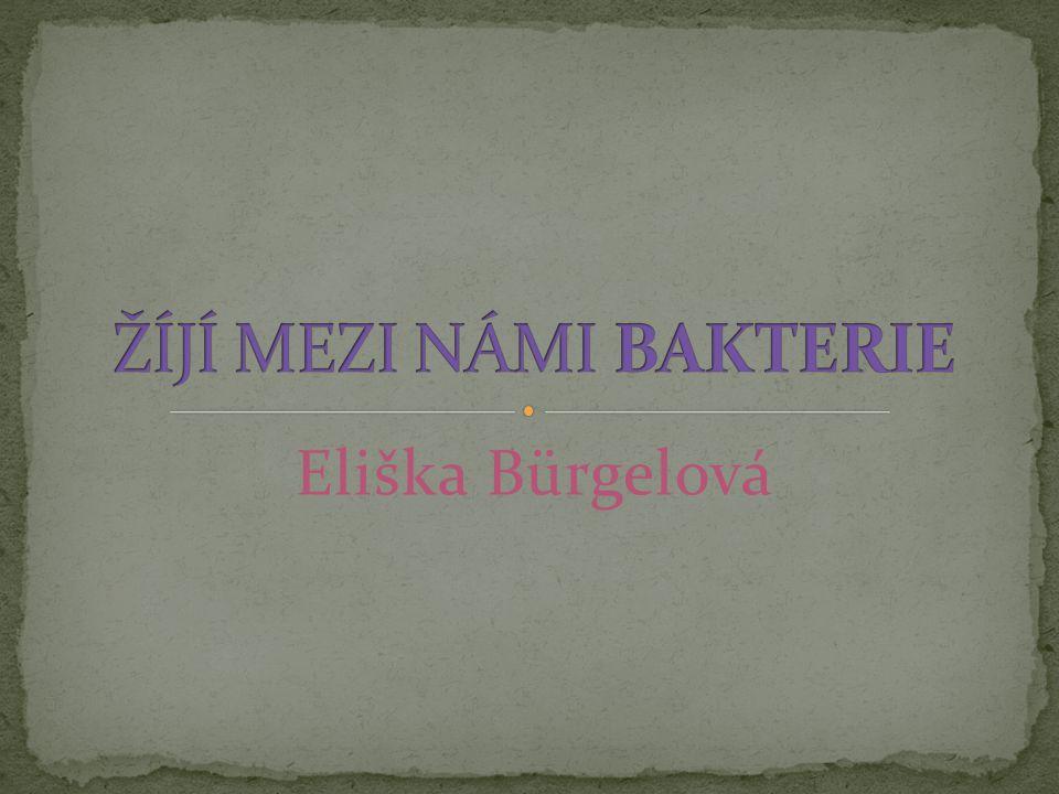 Eliška Bürgelová