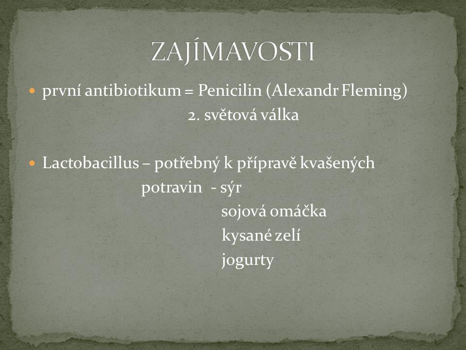 první antibiotikum = Penicilin (Alexandr Fleming) 2. světová válka Lactobacillus – potřebný k přípravě kvašených potravin - sýr sojová omáčka kysané z