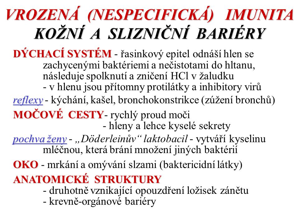 """VROZENÁ (NESPECIFICKÁ) IMUNITA KOŽNÍ A SLIZNIČNÍ BARIÉRY DÝCHACÍ SYSTÉM DÝCHACÍ SYSTÉM - řasinkový epitel odnáší hlen se zachycenými baktériemi a nečistotami do hltanu, následuje spolknutí a zničení HCl v žaludku - v hlenu jsou přítomny protilátky a inhibitory virů reflexy reflexy - kýchání, kašel, bronchokonstrikce (zúžení bronchů) MOČOVÉ CESTY MOČOVÉ CESTY- rychlý proud moči - hleny a lehce kyselé sekrety pochva ženy pochva ženy - """"Döderleinův laktobacil - vytváří kyselinu mléčnou, která brání množení jiných baktérií OKO OKO - mrkání a omývání slzami (baktericidní látky) ANATOMICKÉ STRUKTURY - druhotně vznikající opouzdření ložisek zánětu - krevně-orgánové bariéry"""