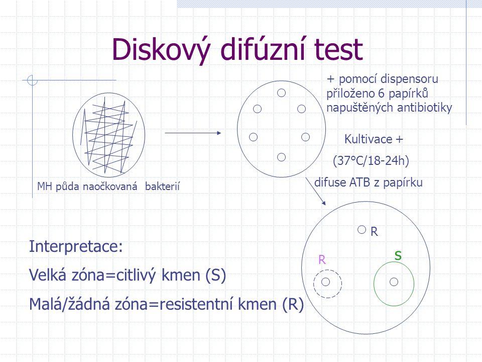 Diskový difúzní test MH půda naočkovaná bakterií + pomocí dispensoru přiloženo 6 papírků napuštěných antibiotiky Kultivace + (37°C/18-24h) difuse ATB