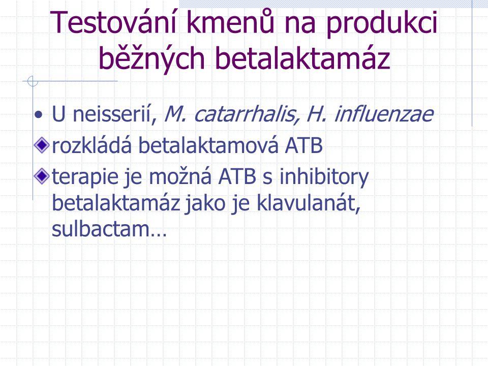 Testování kmenů na produkci běžných betalaktamáz U neisserií, M. catarrhalis, H. influenzae rozkládá betalaktamová ATB terapie je možná ATB s inhibito