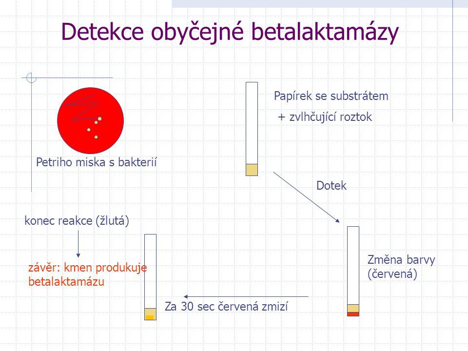 Detekce obyčejné betalaktamázy Papírek se substrátem + zvlhčující roztok Petriho miska s bakterií Dotek Změna barvy (červená) Za 30 sec červená zmizí