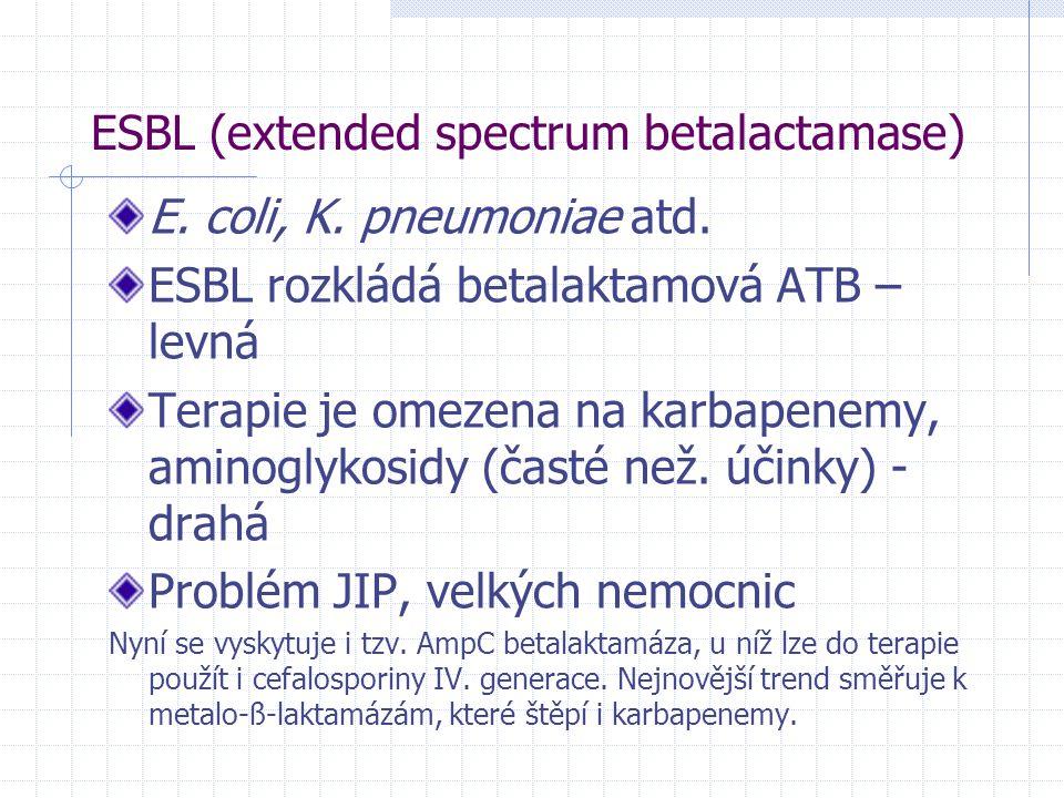 ESBL (extended spectrum betalactamase) E. coli, K. pneumoniae atd. ESBL rozkládá betalaktamová ATB – levná Terapie je omezena na karbapenemy, aminogly
