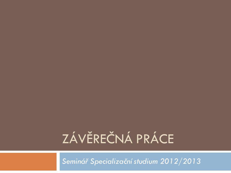 ZÁVĚREČNÁ PRÁCE Seminář Specializační studium 2012/2013