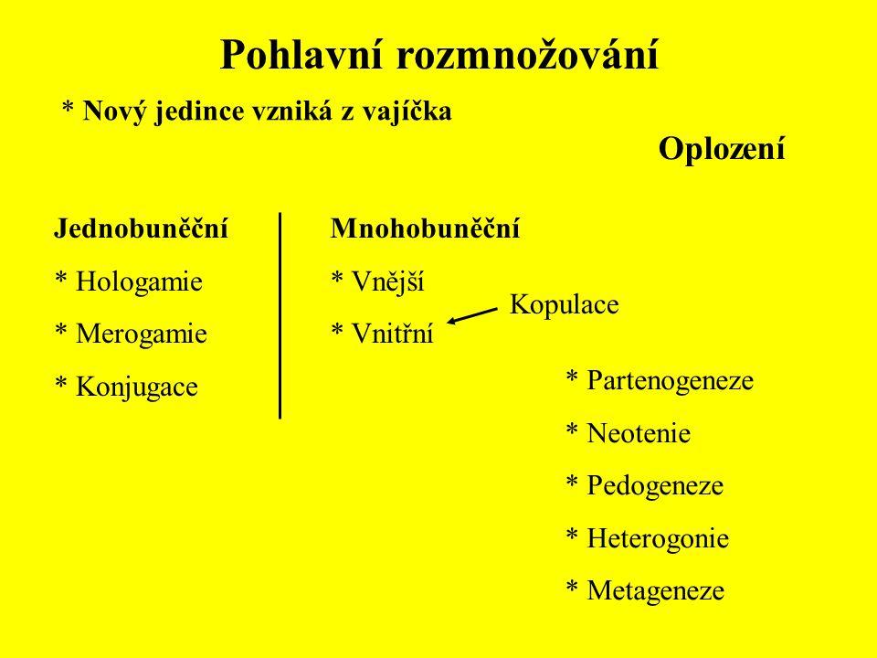 Pohlavní rozmnožování Jednobuněční * Hologamie * Merogamie * Konjugace Mnohobuněční * Vnější * Vnitřní Kopulace * Partenogeneze * Neotenie * Pedogenez