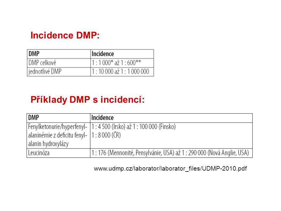 Incidence DMP: Příklady DMP s incidencí: www.udmp.cz/laborator/laborator_files/UDMP-2010.pdf