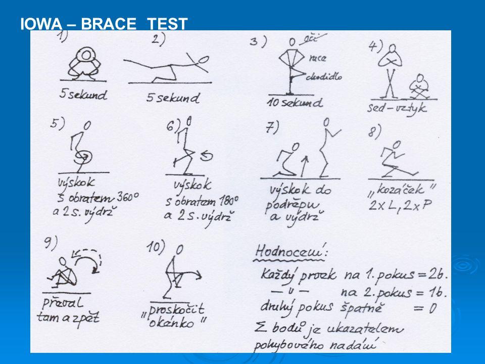 IOWA – BRACE TEST