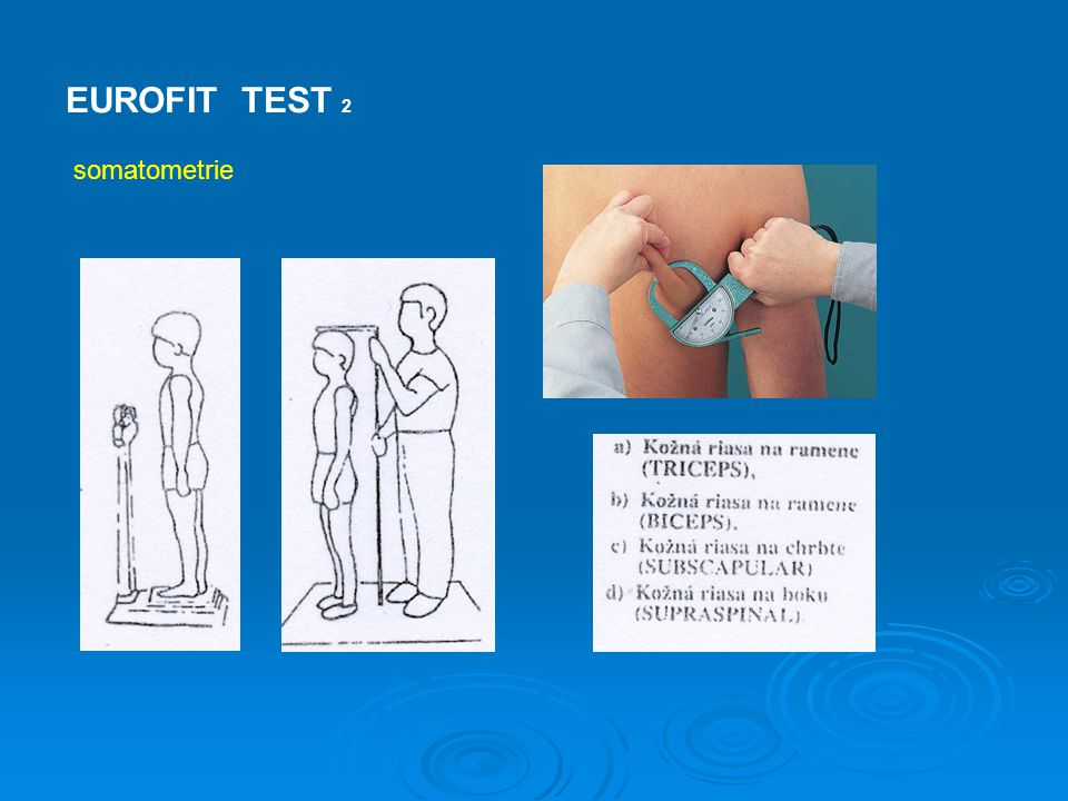 EUROFIT TEST Test pro dospělou populaci obsahuje alternativní testy: - chůze na 2 km - výskok do výšky - úklon trupu a abdukce ramenního kloubu