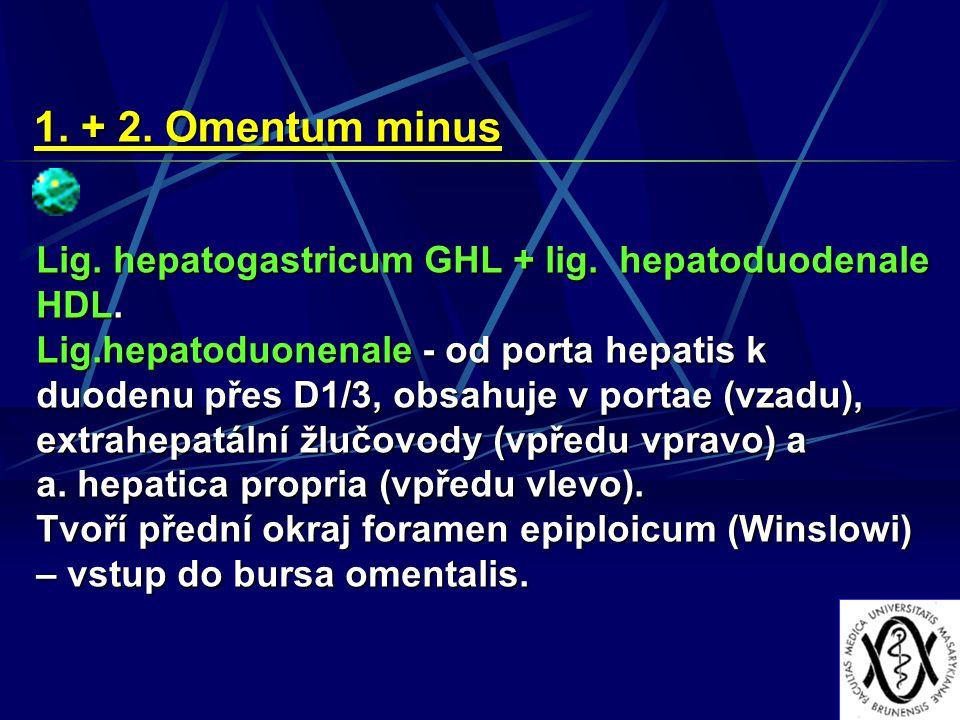 1. + 2. Omentum minus Lig. hepatogastricum GHL + lig. hepatoduodenale HDL. Lig.hepatoduonenale - od porta hepatis k duodenu přes D1/3, obsahuje v port