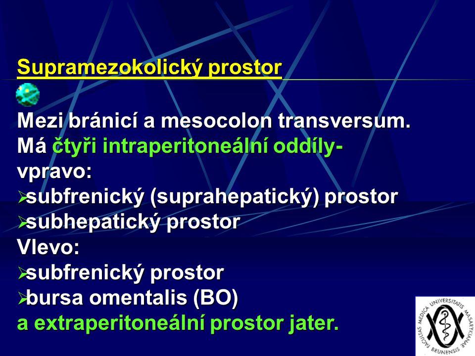 Supramezokolický prostor Mezi bránicí a mesocolon transversum. Má čtyři intraperitoneální oddíly- vpravo:  subfrenický (suprahepatický) prostor  sub