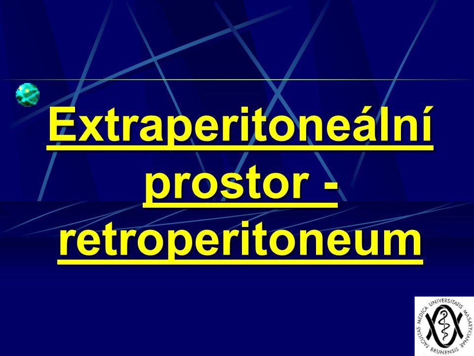 Pravý a levý subfrenický prostor rozděluje ligamentum falciforme hepatis.