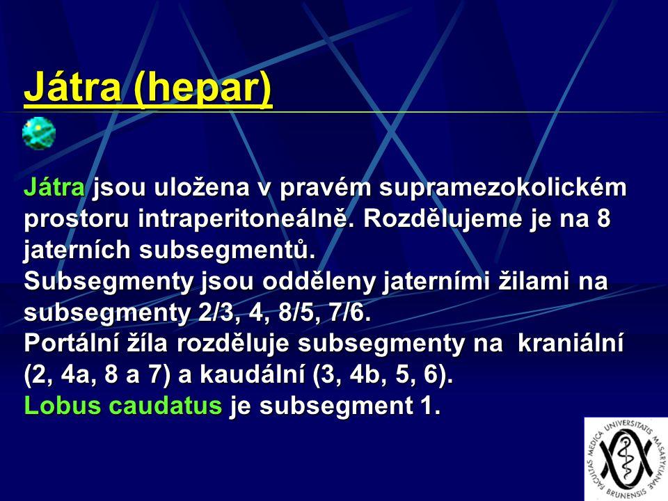 Játra (hepar) Játra jsou uložena v pravém supramezokolickém prostoru intraperitoneálně. Rozdělujeme je na 8 jaterních subsegmentů. Subsegmenty jsou od