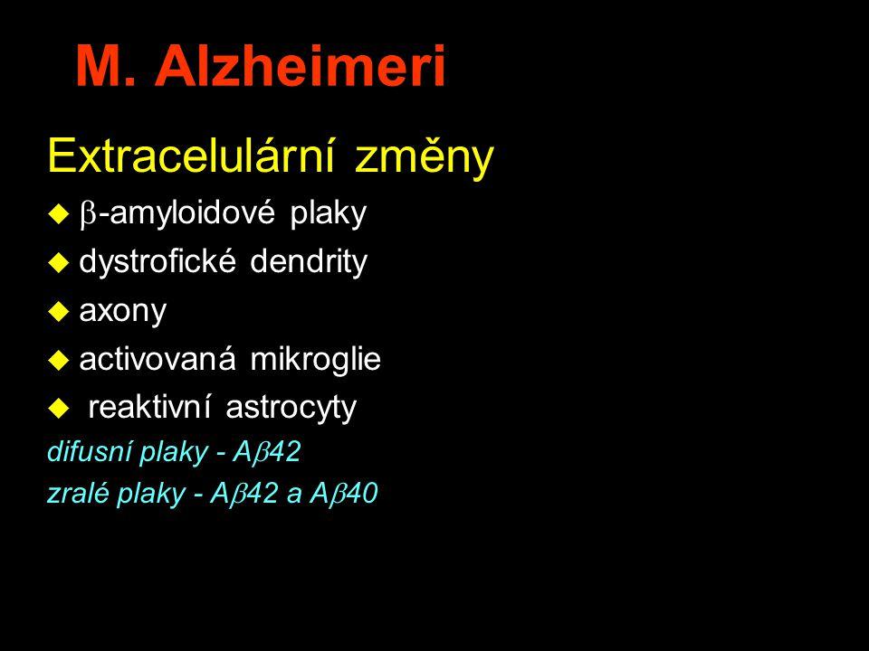 M. Alzheimeri Extracelulární změny   -amyloidové plaky u dystrofické dendrity u axony u activovaná mikroglie u reaktivní astrocyty difusní plaky - A