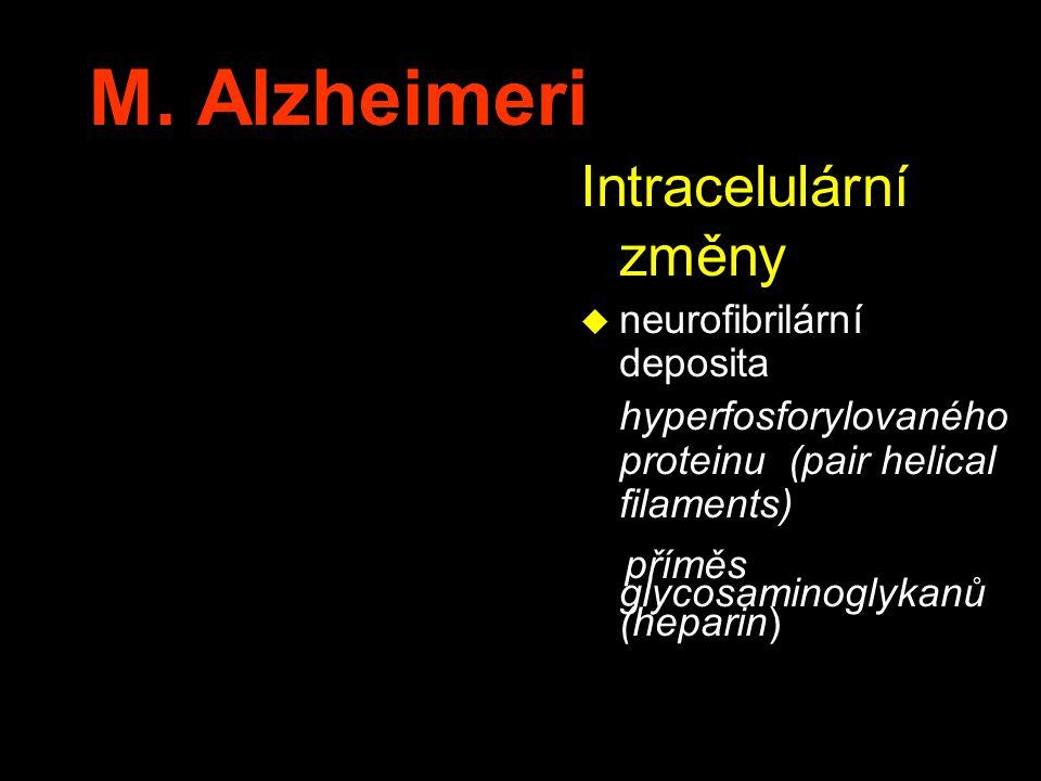M. Alzheimeri Intracelulární změny u neurofibrilární deposita hyperfosforylovaného proteinu (pair helical filaments) příměs glycosaminoglykanů (hepari