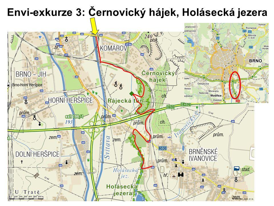 Envi-exkurze 3: Černovický hájek, Holásecká jezera