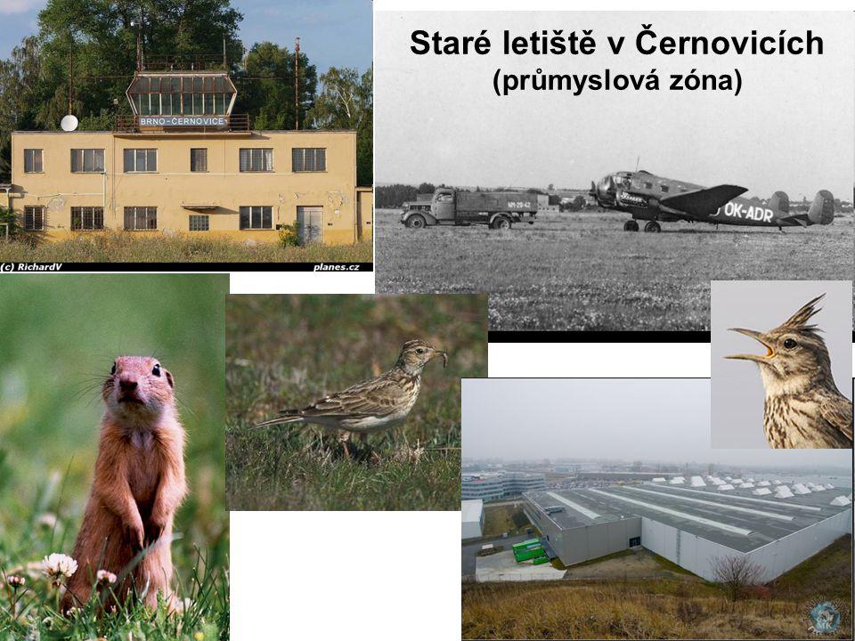 Staré letiště v Černovicích (průmyslová zóna)