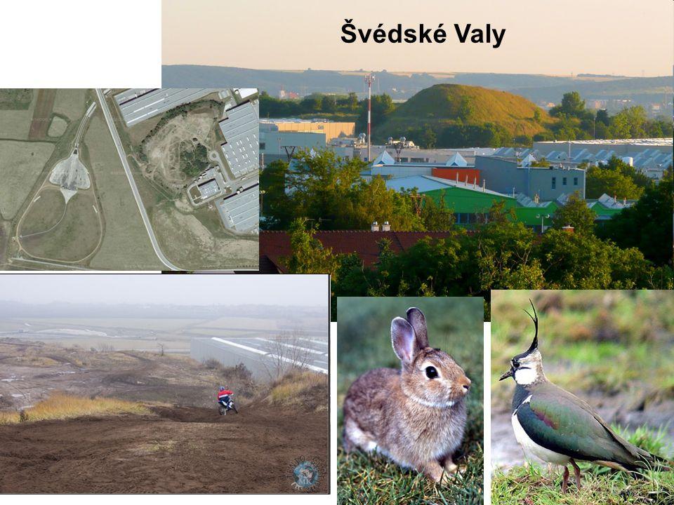 Švédské Valy